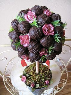 truffle topiary top | Eve18 | Flickr