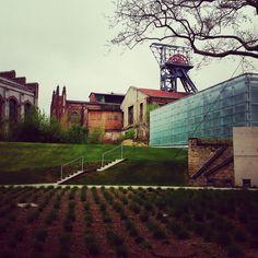 Nowa siedziba #muzeum #Muzeum #Śląskie Poland, Louvre, Mansions, House Styles, Building, Places, Travel, Viajes, Villas