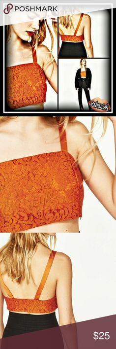 Host Pick Zara Lace Crop Top NWT Thanks for making this a Host Pick  Zara Lace Crop Top. Side zipper, 100% polyester. Front measures approximately 8 inches and the back measures approximately 3 inches.  Arm pit to arm pit is approximately 15 inches.  NWT. Color is burnt orange. Zara Tops Crop Tops