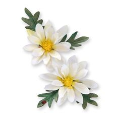 Sizzix Thinlits Die Set 2PK - Flower, Mini Daisy $9.99