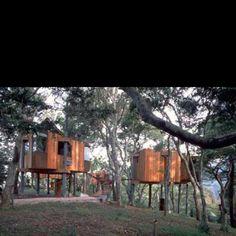 Tree houses at Post Ranch Inn, Big Sur.