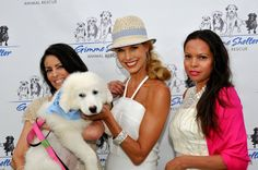 #GimmeShelter #charity #Hamptonsevents #dogs #bethstern #outandabout #Hamptons