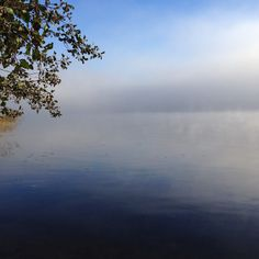 järvi, Päijäne, aamu, sumu