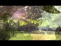 Meditacion para niños #1 - Embebido en la luz de sol - Brahma Kumaris