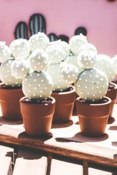 Take a look at this fantastic cactus birthday party! The cupcakes are so much fun! See more party ideas and share yours at CatchMyParty.com  #catchmyparty #partyideas #cactus #cactusparty #girlbirthdayparty #fiesta