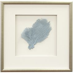 """Framed blue sea fan wall decor.Product: Framed wall artConstruction Material: Wood, matte, glass and sea lifeColor: Burnished silver frameDimensions: 17.5"""" H x 17.5"""" WCleaning and Care: Wipe with dry cloth"""