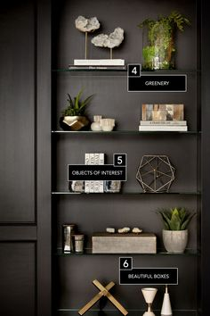 6 Ways To Master Your Bookcase Decoration Bookcase Shelf styling Shelf decor Shelves Shelfie Styling Bookshelves, Decorating Bookshelves, Bookshelf Design, Bookshelf Ideas, Black Bookshelf, Modern Bookshelf, Bookcases, How To Decorate Bookshelves, Black Shelves