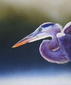 Ibis Shorebirds, Gallery, Artwork, Animals, Work Of Art, Roof Rack, Animaux, Animal, Animales