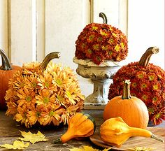 Chrysanthemum pumpkins - Carve out pumpkin and fill with wet floral foam. Use nail or drill to make holes. Insert flowers in holes - Centerpiece!