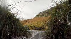 Moelwyn Mountain Stream in northern Wales