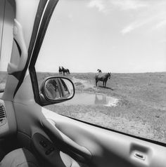 Lee Friedlander, Nebraska, 1999 (America by Car) Photography Exhibition, Modern Photography, Black And White Photography, Street Photography, Stunning Photography, Car Photography, Lee Friedlander, Aberdeen, Shadow Portraits