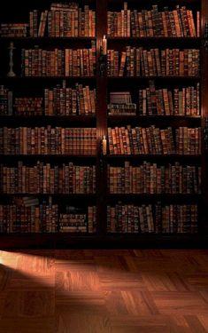 Items similar to Children Boys Photography Backdrop, Bookshelf indoors photobooth backdrop, Portraits bookshelf photodrops on Etsy Beautiful Library, Dream Library, Library Books, Hogwarts, Old Libraries, Bookstores, Photo Booth Backdrop, Brown Aesthetic, Book Nooks