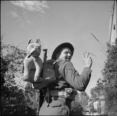 """British Soldier carrying his mascott """"Churchill"""" all through the Italy campaign"""