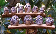 Owls painted on rocks by Ernestina Gallina, Pietrevive. https://www.facebook.com/pietrevive.ernestina