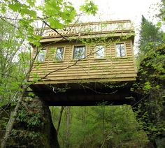 Mont-Tremblant Treehouse Rentals
