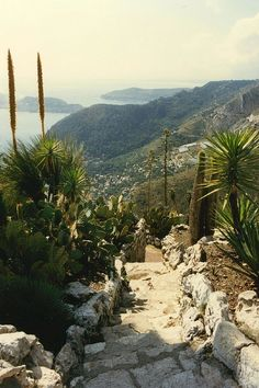 Èze is a commune in the Alpes-Maritimes department in southeastern France, not far from the city of Nice. Eze France, Ville France, South Of France, Beautiful Hotels, Beautiful Places, Provence, Monuments, Nice Cote D Azur, Villefranche Sur Mer