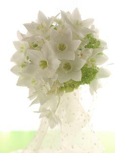 ティアドロップブーケ ユーチャリスの純白 : 一会 ウエディングの花