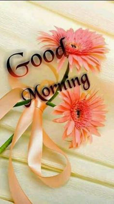 569 Best Good Morning Cards Images In 2018 Good Morning Good