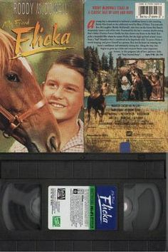 """A young boy is determined to befriend and tame a wild horse in this screen version of Mary O'Hara's novel. Despite the fact that his chosen horse comes from """"bad blood,"""" 10-year old Ken decides he must tame it, to prove himself as a person. MY FRIEND FLICKA is a family classic for all ages.  picture is the movie you get .... I ONLY TAKE PAYPAL PAYMENTS.......  International shipping email first for shipping cost"""