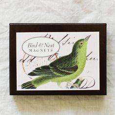 CAVALLINI マグネットセット(バード) - 鳥モチーフ雑貨・鳥グッズのセレクトショップ:鳥水木    #bird #stationery #magnets #torimizuki Magnets, Bird, Birds