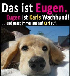 Das ist Eugen. Eugen ist Karls Wachhund! ... und passt immer gut auf Karl auf.