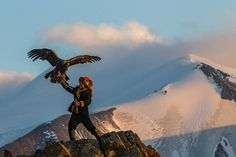 The Eagle Huntress, a documentary film set in Mongolia directed by Otto Bell and starring teenager Aisholpan Nurgaiv, debuted Sunday at Sundance Film Mongolia, Eagle Hunting, Golden Eagle, 13 Year Olds, New Movies, Bald Eagle, Eagle Eye, Marvel, World