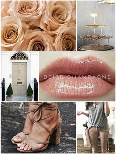 Beige Champagne LipSense. A beautiful beige with a champagne colored sparkle. Message me on fb @charmcitylipswithjess for more details. SeneGence Distributor #341275
