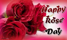 Get Rose Day 2017 Status for this 2017 happy rose day. Celebrate with your love by sending happy rose day status for fb. Also give gifts.
