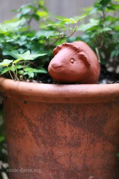 Terracotta guinea pig for the garden. Would look so cute sitting in a planter full of herbs!