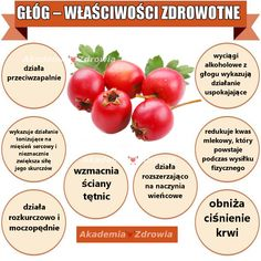 Głóg i jego korzyści zdrowotne - Zdrowe poradniki Good To Know, Food And Drink, Vegetables, Food, Kitchens, Vegetable Recipes, Veggies