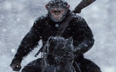 War For The Planet Of The Apes Plot Gives Nod To the First Film Back In 1968 - http://www.gackhollywood.com/2016/12/war-for-the-planet-of-the-apes-plot-gives-nod-to-the-first-film-back-in-1968/