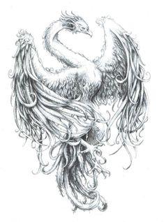 phoenix - Pesquisa Google
