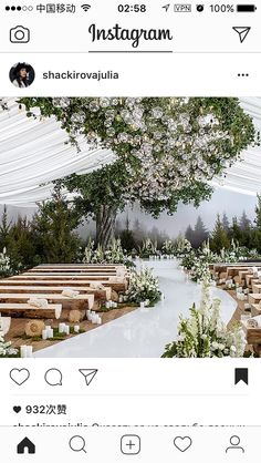 Forest of flowers themed rustic wedding ceremony. - Dankeskarten Hochzeit 2019 - The Effective Pictures We Offer You About wedding ceremony decorations Wedding Decorations On A Budget, Wedding Themes, Wedding Designs, Wedding Colors, Wedding Events, Wedding Flowers, Weddings, Aisle Decorations, Cake Wedding
