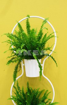 Product name:	 IKEA PS 2012  Product description:	plant stand with 3 pots