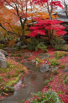 Ashikaga Takauji's younger brother, Tadayoshi supposedly had a dream about a gol. Beautiful Places To Visit, Beautiful World, Beautiful Gardens, Beautiful Nature Wallpaper, Beautiful Landscapes, Landscape Photography, Nature Photography, Japanese Garden Landscape, Japan Garden