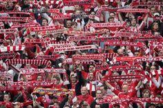 Mach hier den Test!: Wie gut kennst du deinen 1. FC Köln?