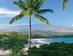 Kohala Coast, Big Island, Hawaii