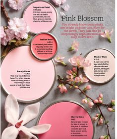Paint Palette – Pink Blossom Sophisticated petal pinks that are easy to live with. Paint Colors Used: Impatiens Petals by Sherwin Williams Italian Rose by Ace Hardware Barley Blush … Read Interior Paint Colors, Paint Colors For Home, Pink Paint Colors, Light Pink Paint, Soft Colors, Wall Colors, House Colors, Accent Colors, Paint Shades