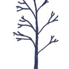 Fruit Tree Pruning Basics