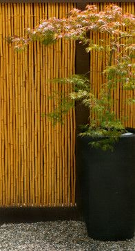 5609 Residence - asian - landscape - los angeles - Jesse Im/bugonmyleaf