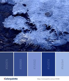 Color Palette ideas from 693 Winter Images Blue Colour Palette, Blue Colors, Colour Palettes, Colours, Color Combinations, Color Schemes, Winter Images, Find Color, Computer Wallpaper