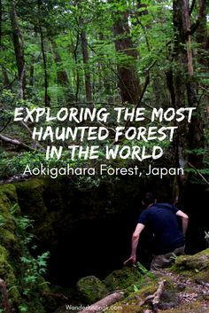 Is the Aokigahara Forest (青木ヶ原) in Japan haunted? Read my experience about hiking off trail in the world's most haunted forest, the Sea of Trees ( 樹海)