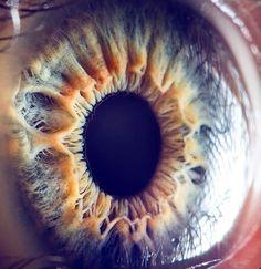 Close up image of an eyeball
