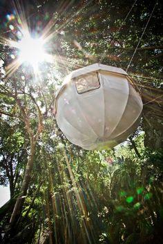 MOVIMENTO SILENCIOSO _ Cocoon Tree #cocoon