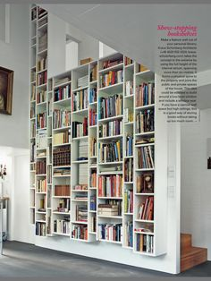 been looking for a neat and smart way to display books...