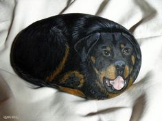 DOUDOU , LE ROTTWEILER | by rockpainting ☼ yvette