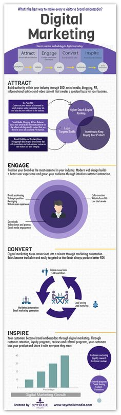 How to turn your visitors into brand ambassadors - Infographic