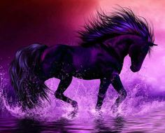 Violet Shades Wallpapers and Backgrounds - Violet Shades Images and Pictures Purple Love, All Things Purple, Shades Of Purple, Purple Stuff, Purple Art, Horse Pictures, Moon Pictures, 3d Fantasy, Black Horses