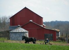 Spring Plowing ~ Sarah's Country Kitchen ~