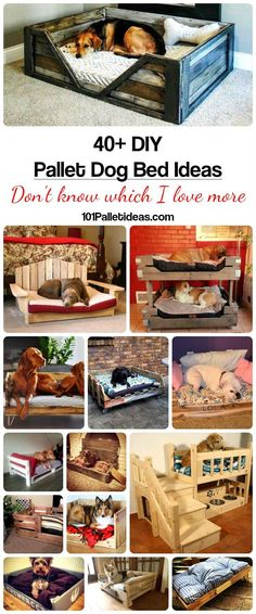 Pallet Dog Bed. Diy home made pallet furniture for your dog and home living. Cute ideas you can make out of pallets for your dogs.